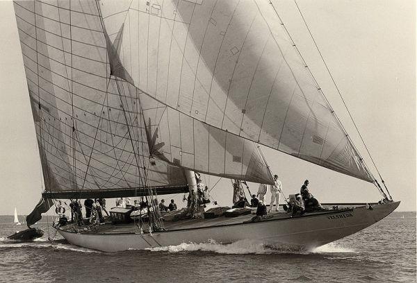 Vesheda Under Sails